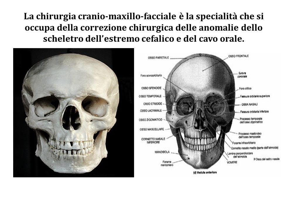 La chirurgia cranio-maxillo-facciale è la specialità che si occupa della correzione chirurgica delle anomalie dello scheletro dellestremo cefalico e d