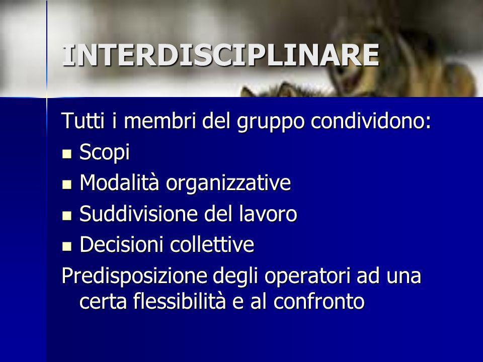 INTERDISCIPLINARE Tutti i membri del gruppo condividono: Scopi Scopi Modalità organizzative Modalità organizzative Suddivisione del lavoro Suddivision