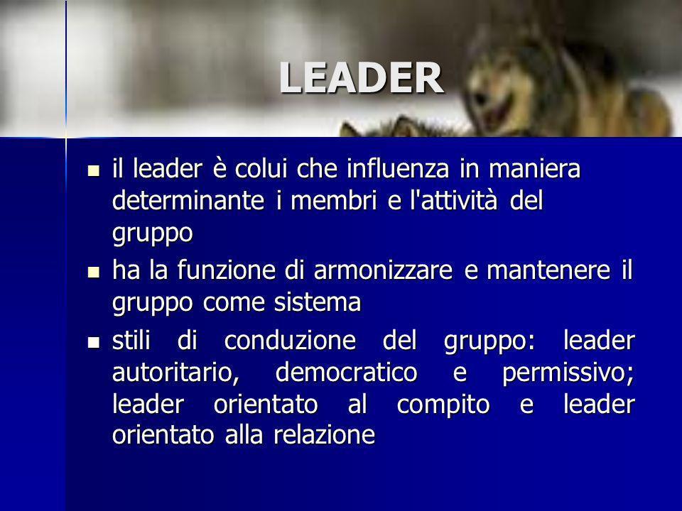 LEADER il leader è colui che influenza in maniera determinante i membri e l'attività del gruppo il leader è colui che influenza in maniera determinant