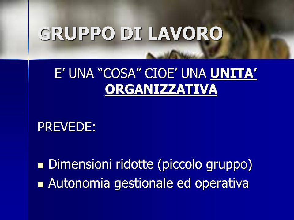 GRUPPO DI LAVORO E UNA COSA CIOE UNA UNITA ORGANIZZATIVA PREVEDE: Dimensioni ridotte (piccolo gruppo) Dimensioni ridotte (piccolo gruppo) Autonomia ge