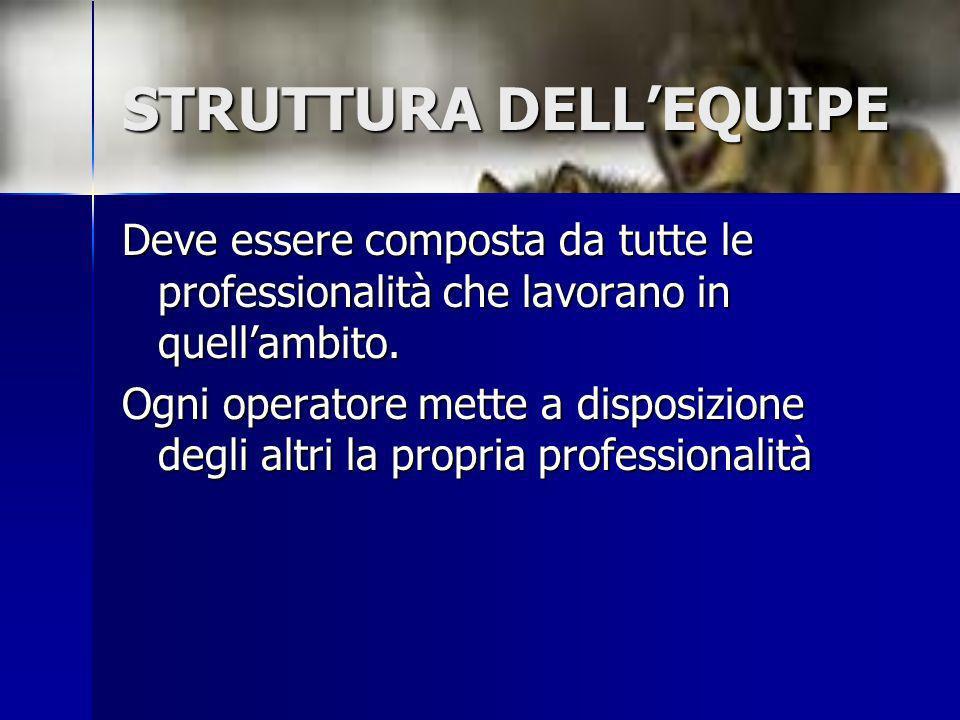 STRUTTURA DELLEQUIPE Deve essere composta da tutte le professionalità che lavorano in quellambito. Ogni operatore mette a disposizione degli altri la