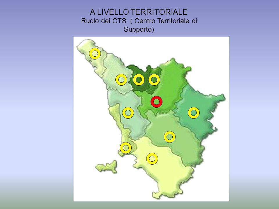 MARIA COPPOLECCHIA A LIVELLO TERRITORIALE Ruolo dei CTS ( Centro Territoriale di Supporto)