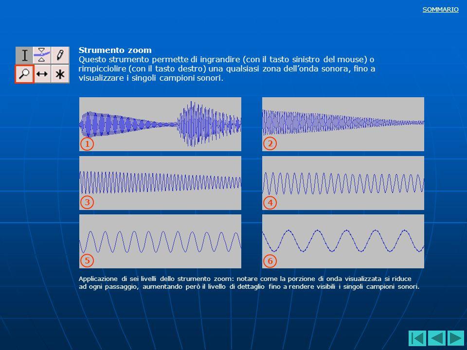 SOMMARIO Strumento zoom Questo strumento permette di ingrandire (con il tasto sinistro del mouse) o rimpicciolire (con il tasto destro) una qualsiasi