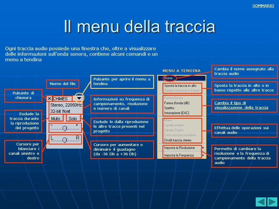 SOMMARIO Il menu della traccia Ogni traccia audio possiede una finestra che, oltre a visualizzare delle informazioni sullonda sonora, contiene alcuni