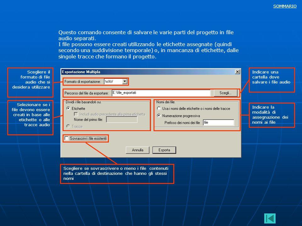 SOMMARIO Questo comando consente di salvare le varie parti del progetto in file audio separati. I file possono essere creati utilizzando le etichette