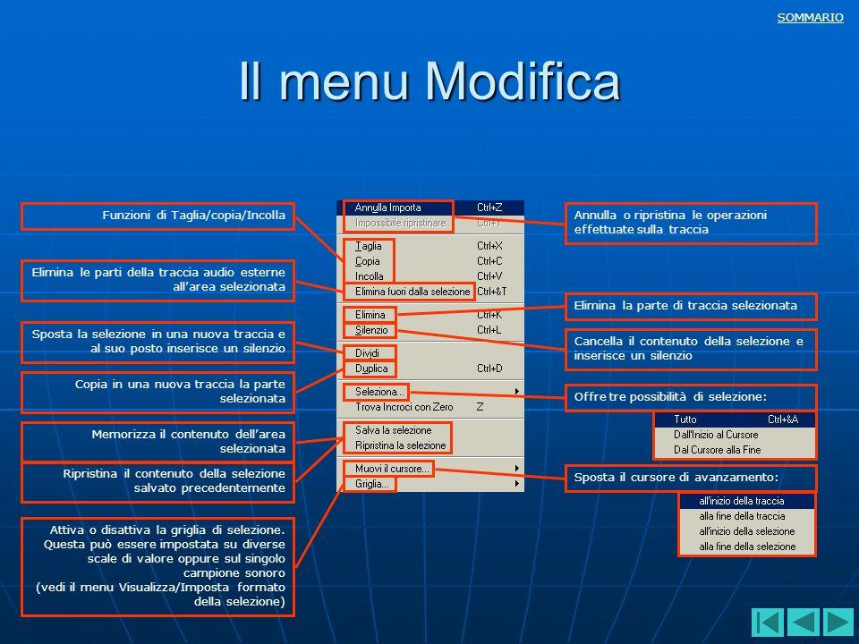 SOMMARIO Il menu Modifica Annulla o ripristina le operazioni effettuate sulla traccia Funzioni di Taglia/copia/Incolla Elimina le parti della traccia