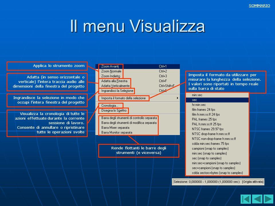 SOMMARIO Il menu Visualizza Applica lo strumento zoom Adatta (in senso orizzontale o verticale) lintera traccia audio alle dimensioni della finestra d