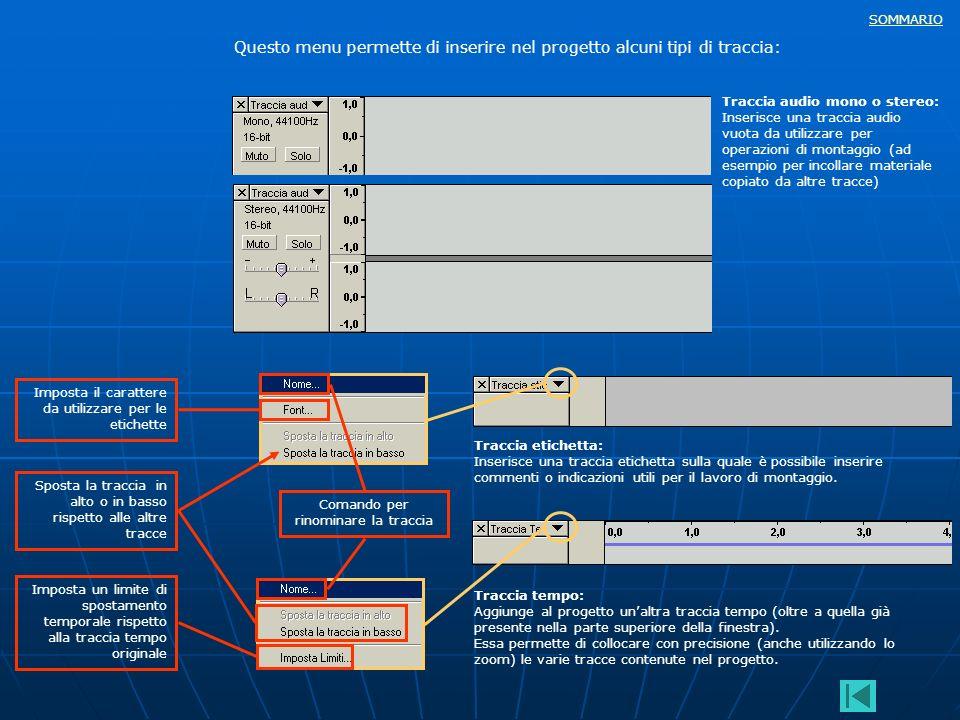 SOMMARIO Questo menu permette di inserire nel progetto alcuni tipi di traccia: Traccia audio mono o stereo: Inserisce una traccia audio vuota da utili
