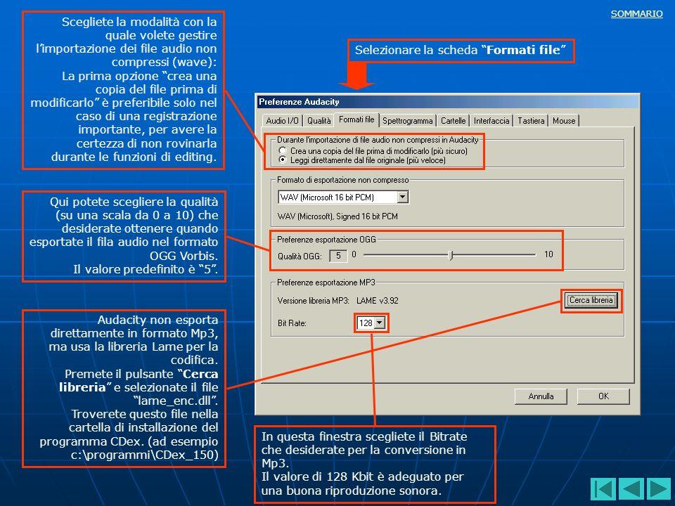 SOMMARIO Scegliete la modalità con la quale volete gestire limportazione dei file audio non compressi (wave): La prima opzione crea una copia del file