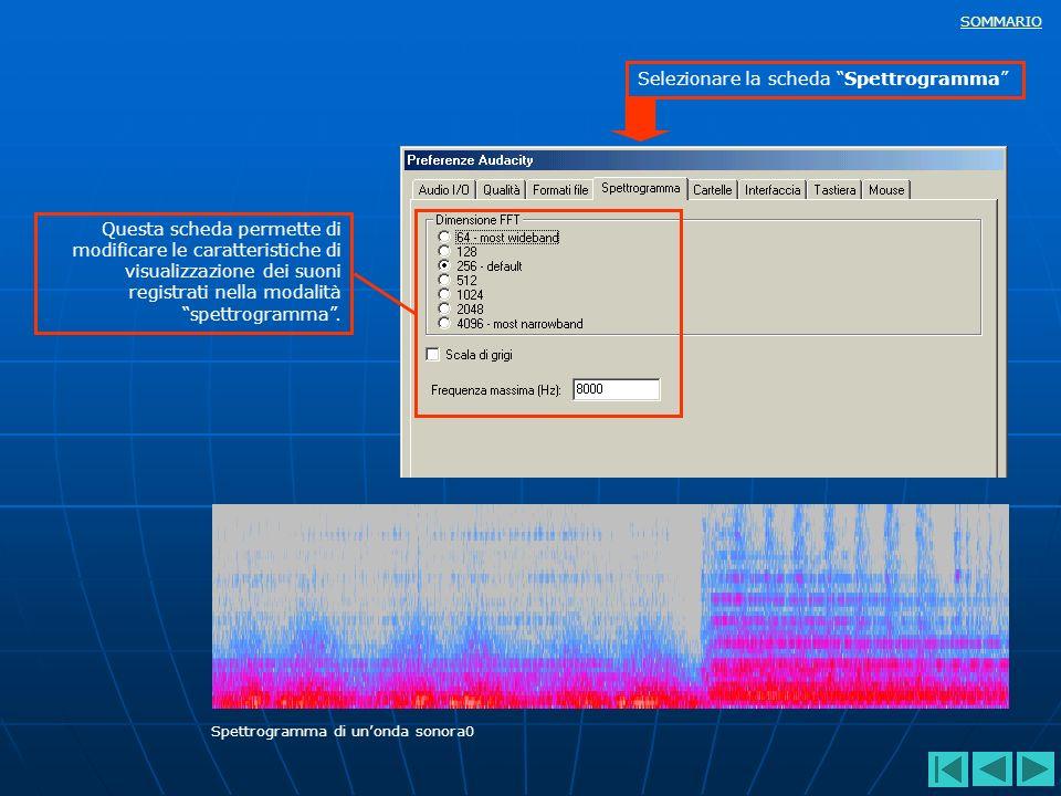SOMMARIO Questa scheda permette di modificare le caratteristiche di visualizzazione dei suoni registrati nella modalità spettrogramma. Selezionare la