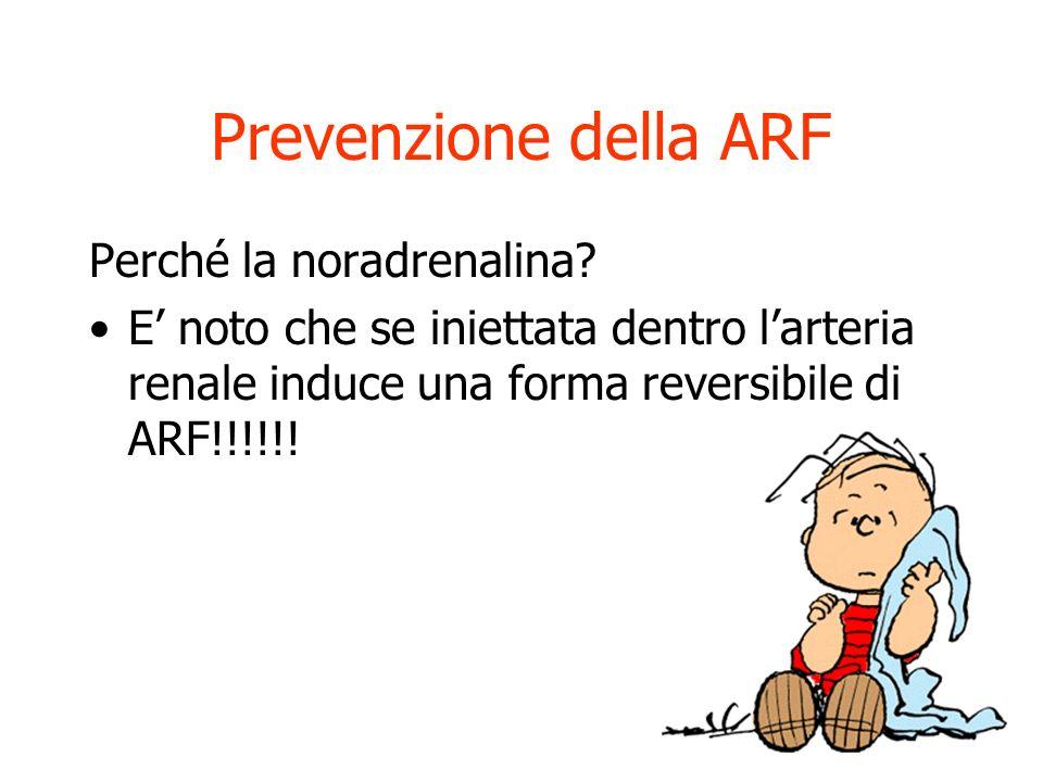 Prevenzione della ARF Idratazione Evitare sostanze nefrotossiche Mantenimento della pressione di perfusione (nello shock settico e in tutti i casi di