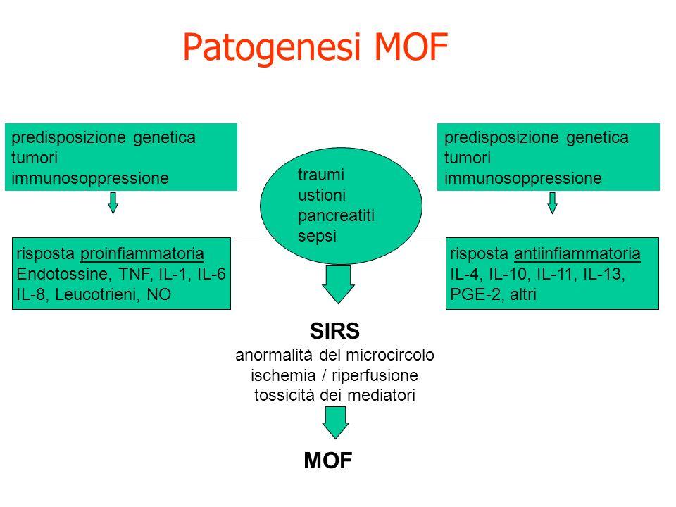 Patogenesi MOF predisposizione genetica tumori immunosoppressione predisposizione genetica tumori immunosoppressione traumi ustioni pancreatiti sepsi risposta antiinfiammatoria IL-4, IL-10, IL-11, IL-13, PGE-2, altri risposta proinfiammatoria Endotossine, TNF, IL-1, IL-6 IL-8, Leucotrieni, NO SIRS anormalità del microcircolo ischemia / riperfusione tossicità dei mediatori MOF