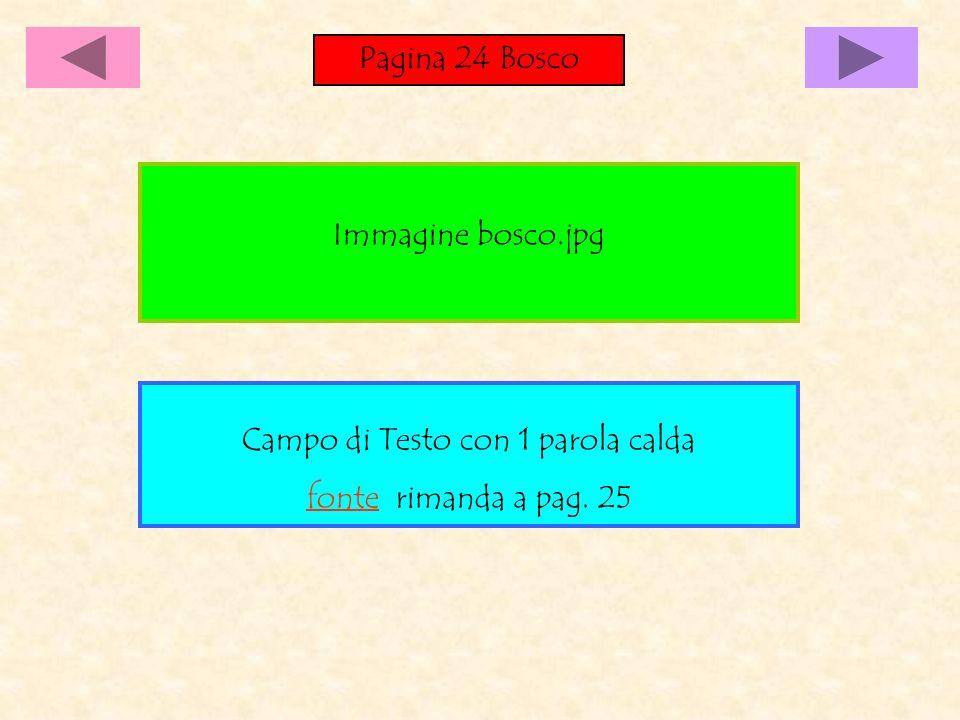 Pagina 24 Bosco Campo di Testo con 1 parola calda fonte rimanda a pag. 25 Immagine bosco.jpg