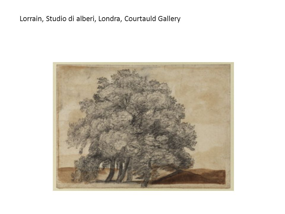 Lorrain, Studio di alberi, Londra, Courtauld Gallery