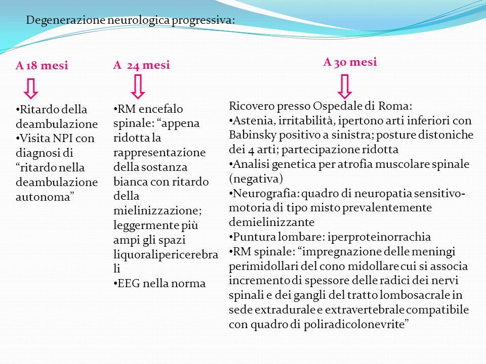 Degenerazione neurologica progressiva: A 24 mesi RM encefalo spinale: appena ridotta la rappresentazione della sostanza bianca con ritardo della mieli