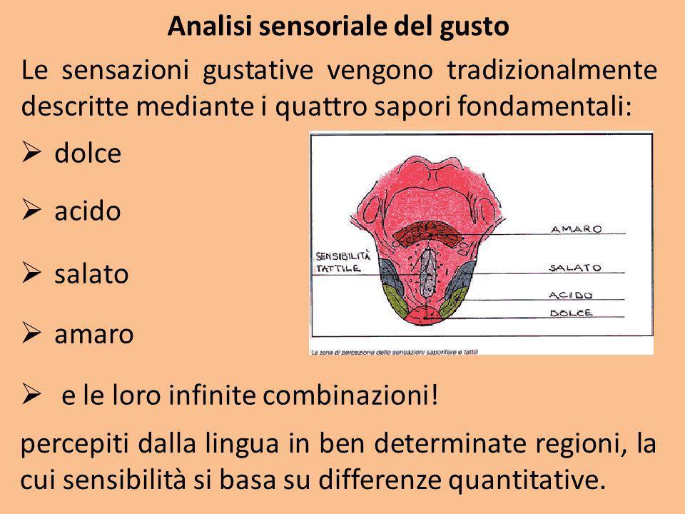 Analisi sensoriale del gusto Le sensazioni gustative vengono tradizionalmente descritte mediante i quattro sapori fondamentali: e le loro infinite com