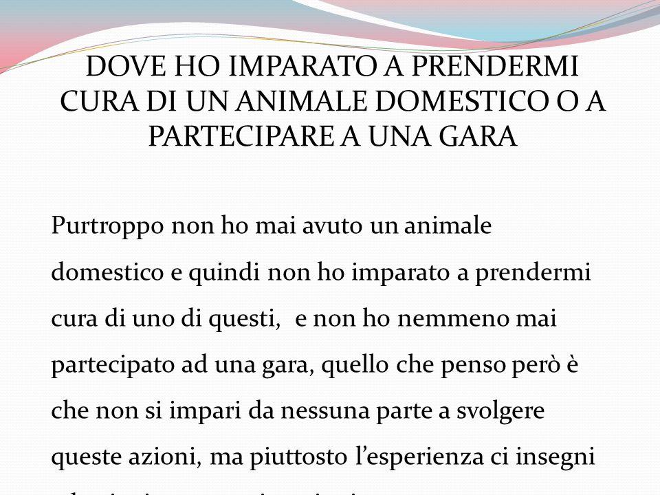 DOVE HO IMPARATO A PRENDERMI CURA DI UN ANIMALE DOMESTICO O A PARTECIPARE A UNA GARA Purtroppo non ho mai avuto un animale domestico e quindi non ho i
