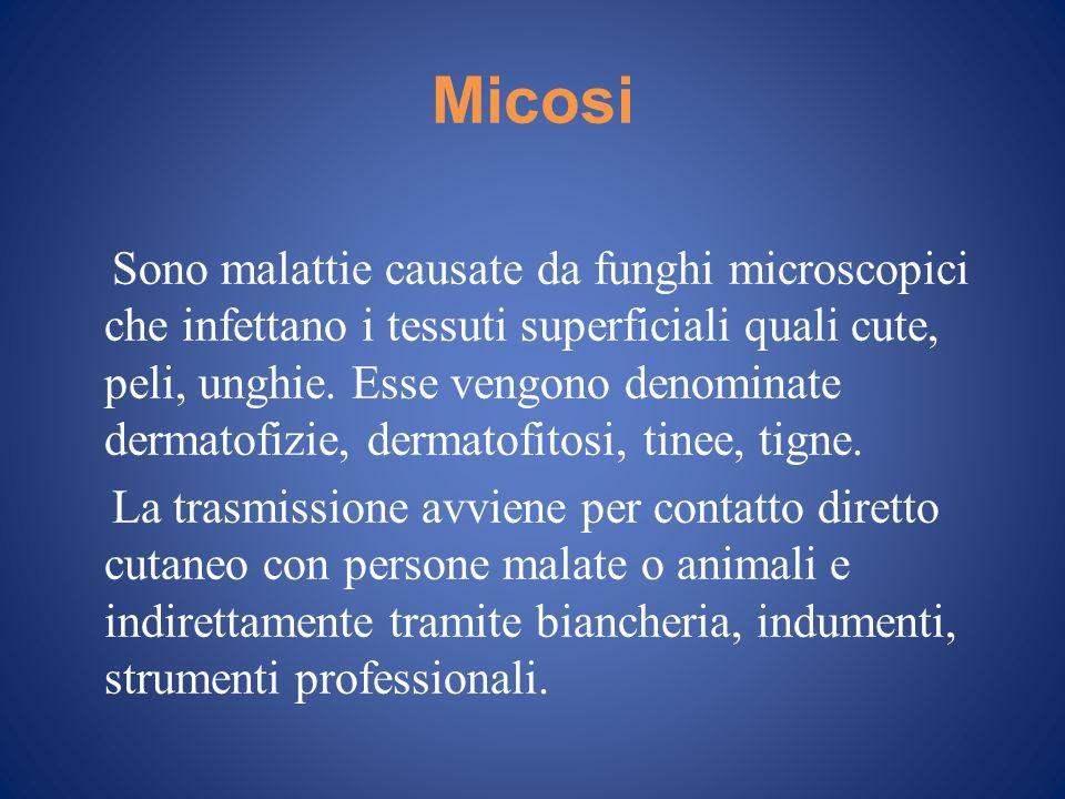 Micosi Sono malattie causate da funghi microscopici che infettano i tessuti superficiali quali cute, peli, unghie. Esse vengono denominate dermatofizi