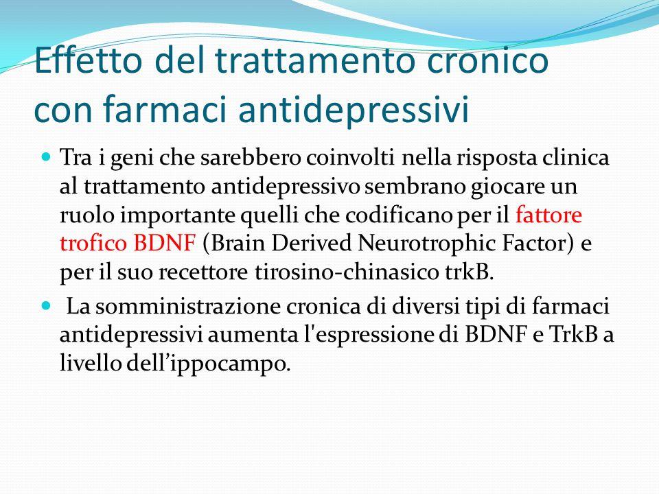 Effetto del trattamento cronico con farmaci antidepressivi Tra i geni che sarebbero coinvolti nella risposta clinica al trattamento antidepressivo sem