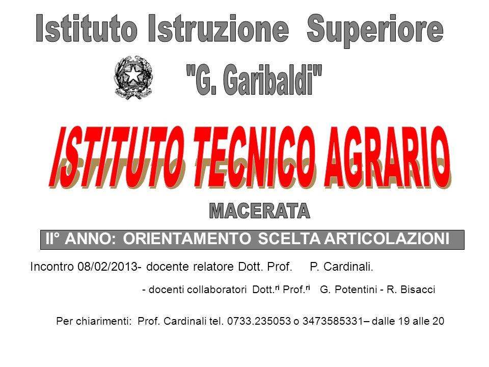 II° ANNO: ORIENTAMENTO SCELTA ARTICOLAZIONI Incontro 08/02/2013- docente relatore Dott.