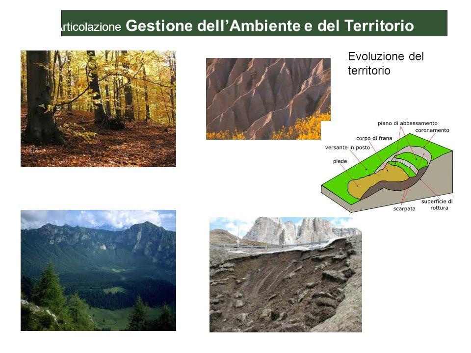 Evoluzione del territorio Articolazione Gestione dellAmbiente e del Territorio