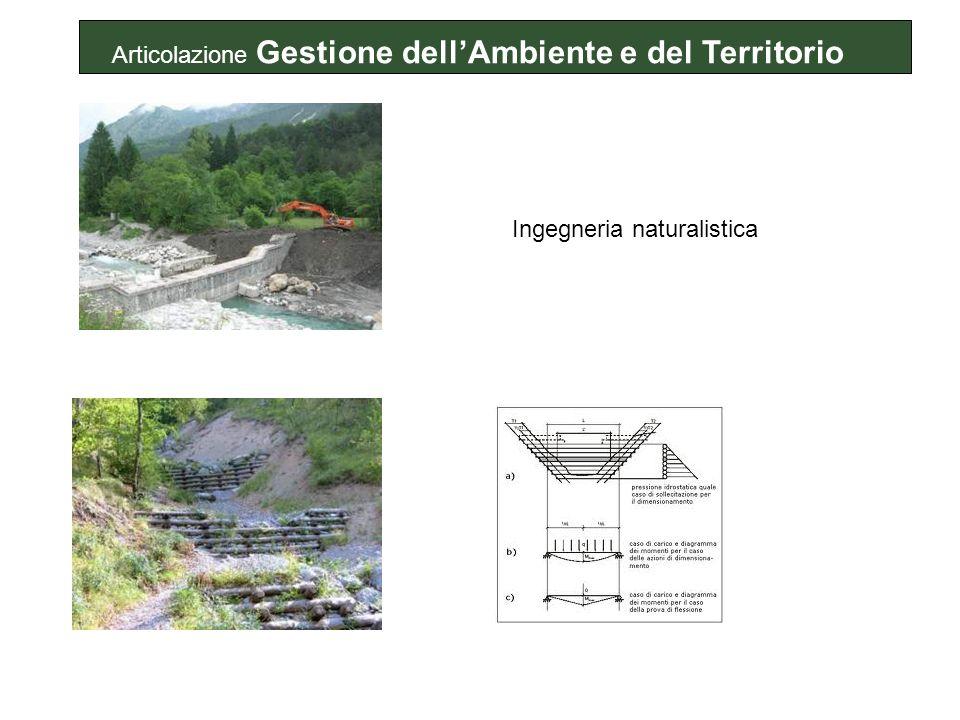 Ingegneria naturalistica Articolazione Gestione dellAmbiente e del Territorio
