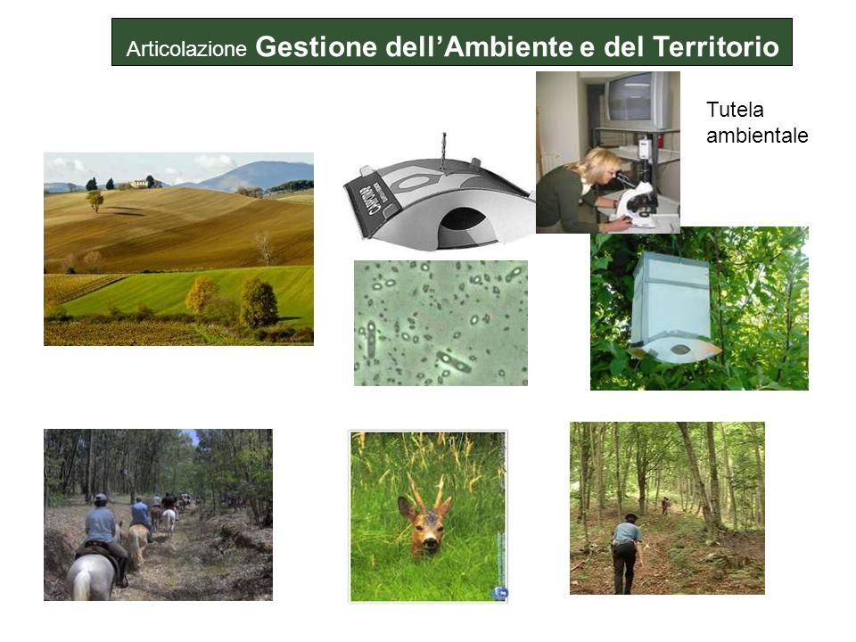 Tutela ambientale Articolazione Gestione dellAmbiente e del Territorio