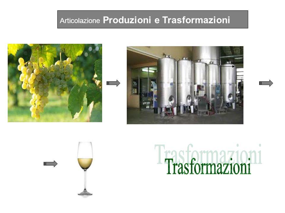 Articolazione Gestione dellAmbiente e del Territorio IIIIVV Produzioni vegetali165132 Trasformazione dei prodotti66 Genio rurale66 Ec., estimo, mark.