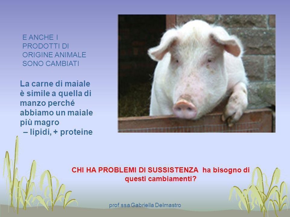 La carne di maiale è simile a quella di manzo perché abbiamo un maiale più magro – lipidi, + proteine E ANCHE I PRODOTTI DI ORIGINE ANIMALE SONO CAMBI