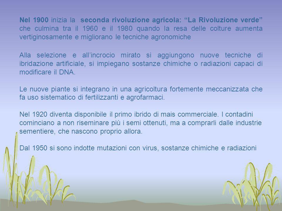 Nel 1900 inizia la seconda rivoluzione agricola: La Rivoluzione verde che culmina tra il 1960 e il 1980 quando la resa delle colture aumenta vertigino