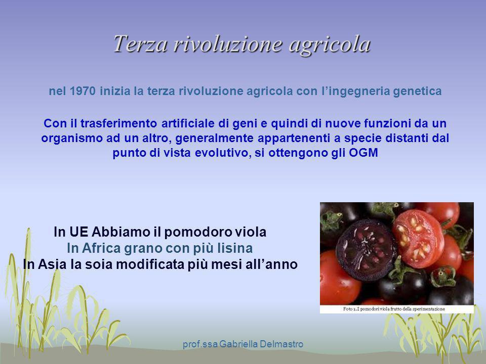 Terza rivoluzione agricola prof.ssa Gabriella Delmastro nel 1970 inizia la terza rivoluzione agricola con lingegneria genetica In UE Abbiamo il pomodo