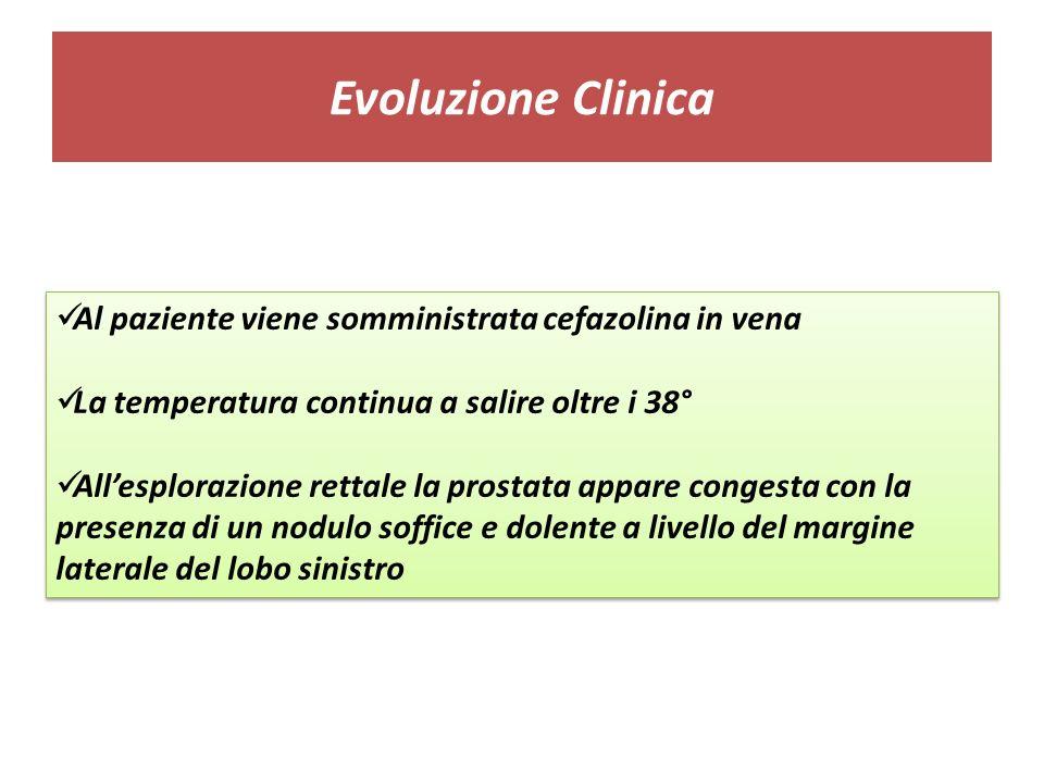 Evoluzione Clinica Al paziente viene somministrata cefazolina in vena La temperatura continua a salire oltre i 38° Allesplorazione rettale la prostata