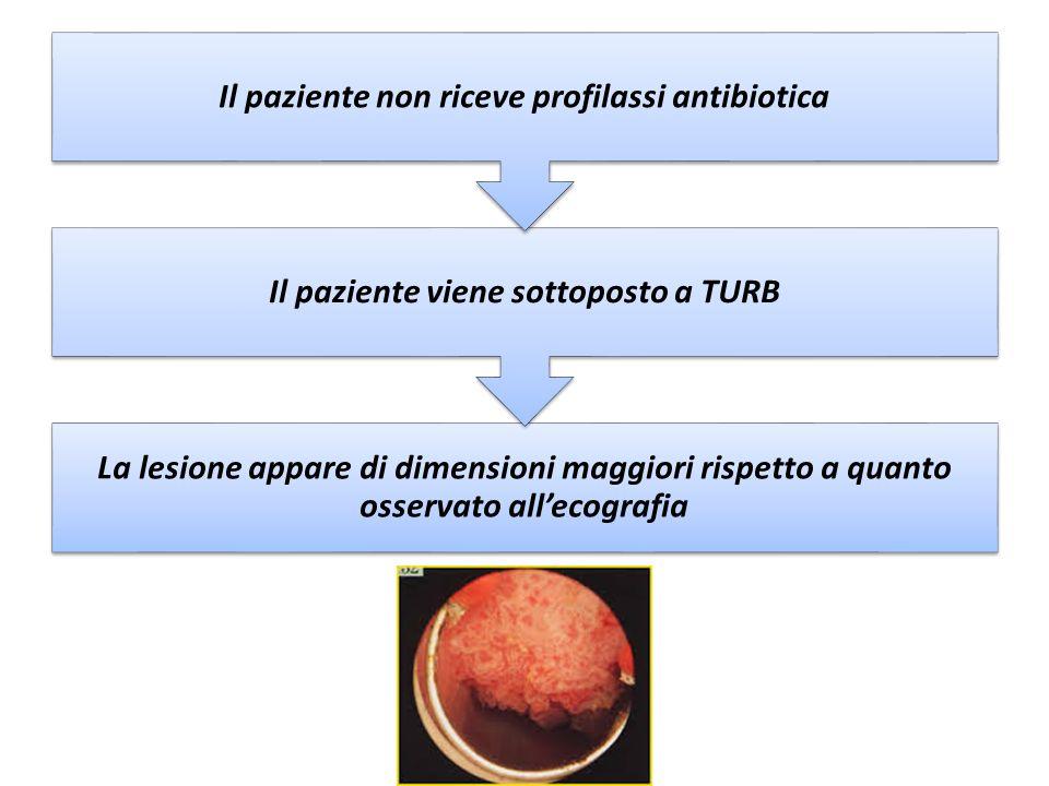La lesione appare di dimensioni maggiori rispetto a quanto osservato allecografia Il paziente viene sottoposto a TURB Il paziente non riceve profilass