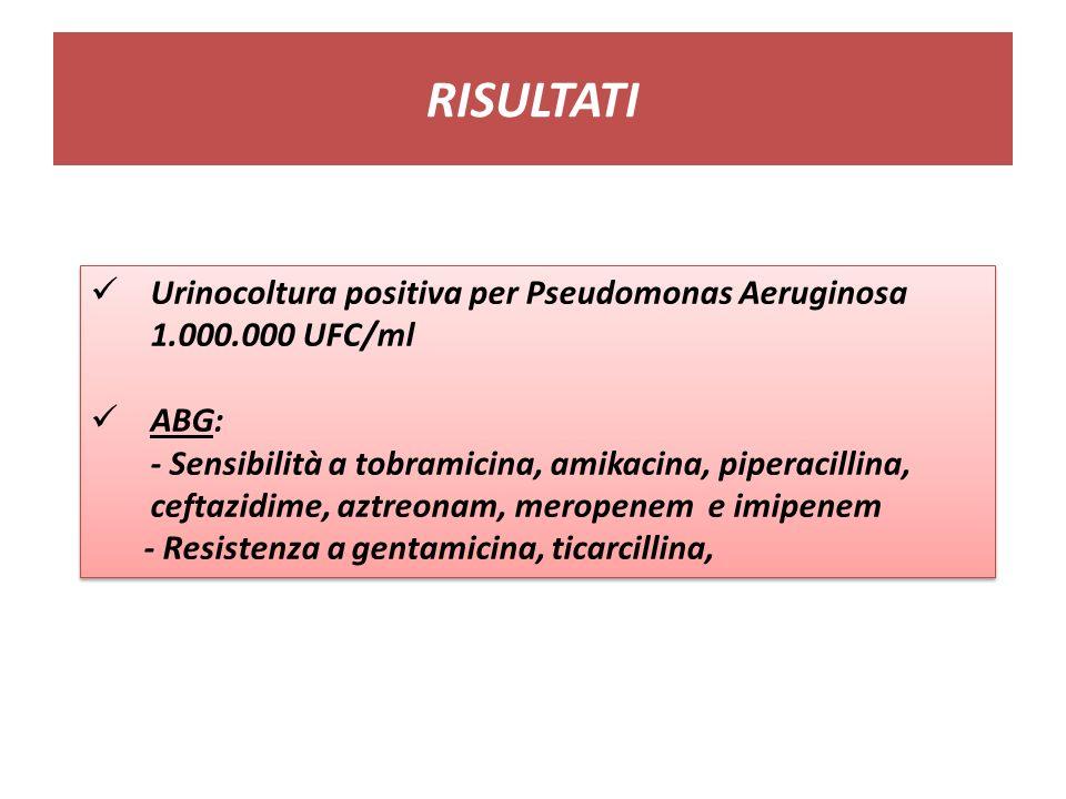 RISULTATI Urinocoltura positiva per Pseudomonas Aeruginosa 1.000.000 UFC/ml ABG: - Sensibilità a tobramicina, amikacina, piperacillina, ceftazidime, aztreonam, meropenem e imipenem - Resistenza a gentamicina, ticarcillina, Urinocoltura positiva per Pseudomonas Aeruginosa 1.000.000 UFC/ml ABG: - Sensibilità a tobramicina, amikacina, piperacillina, ceftazidime, aztreonam, meropenem e imipenem - Resistenza a gentamicina, ticarcillina,