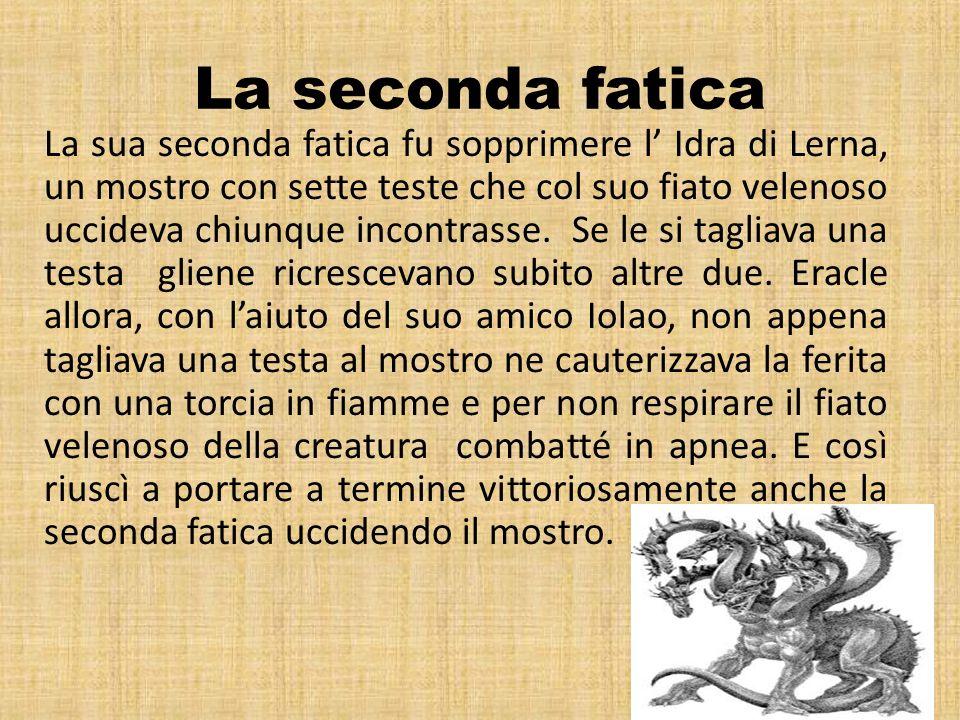 La seconda fatica La sua seconda fatica fu sopprimere l Idra di Lerna, un mostro con sette teste che col suo fiato velenoso uccideva chiunque incontra