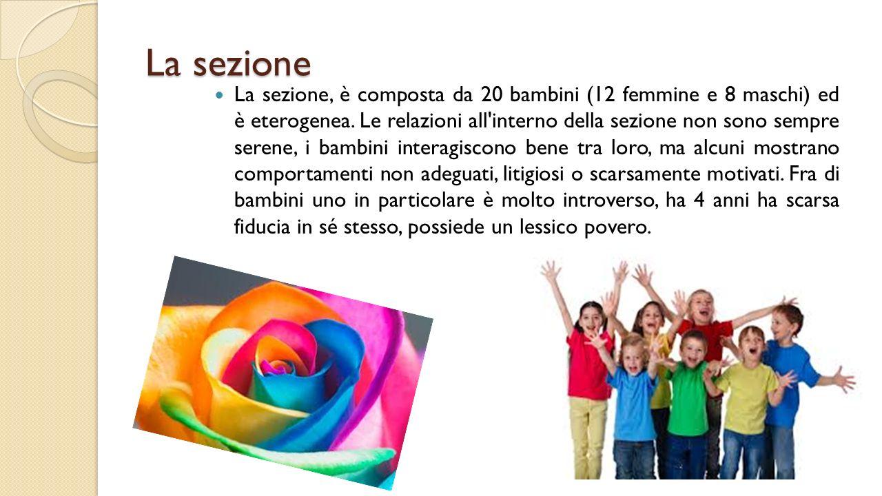 La sezione La sezione, è composta da 20 bambini (12 femmine e 8 maschi) ed è eterogenea. Le relazioni all'interno della sezione non sono sempre serene