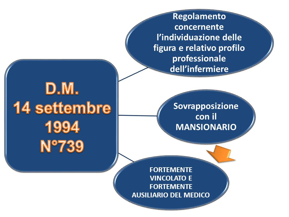 Regolamento concernente lindividuazione delle figura e relativo profilo professionale dellinfermiere Sovrapposizione con il MANSIONARIO FORTEMENTE VIN