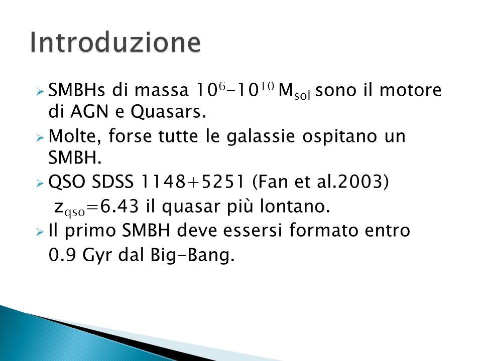 SMBHs di massa 10 6 -10 10 M sol sono il motore di AGN e Quasars. Molte, forse tutte le galassie ospitano un SMBH. QSO SDSS 1148+5251 (Fan et al.2003)