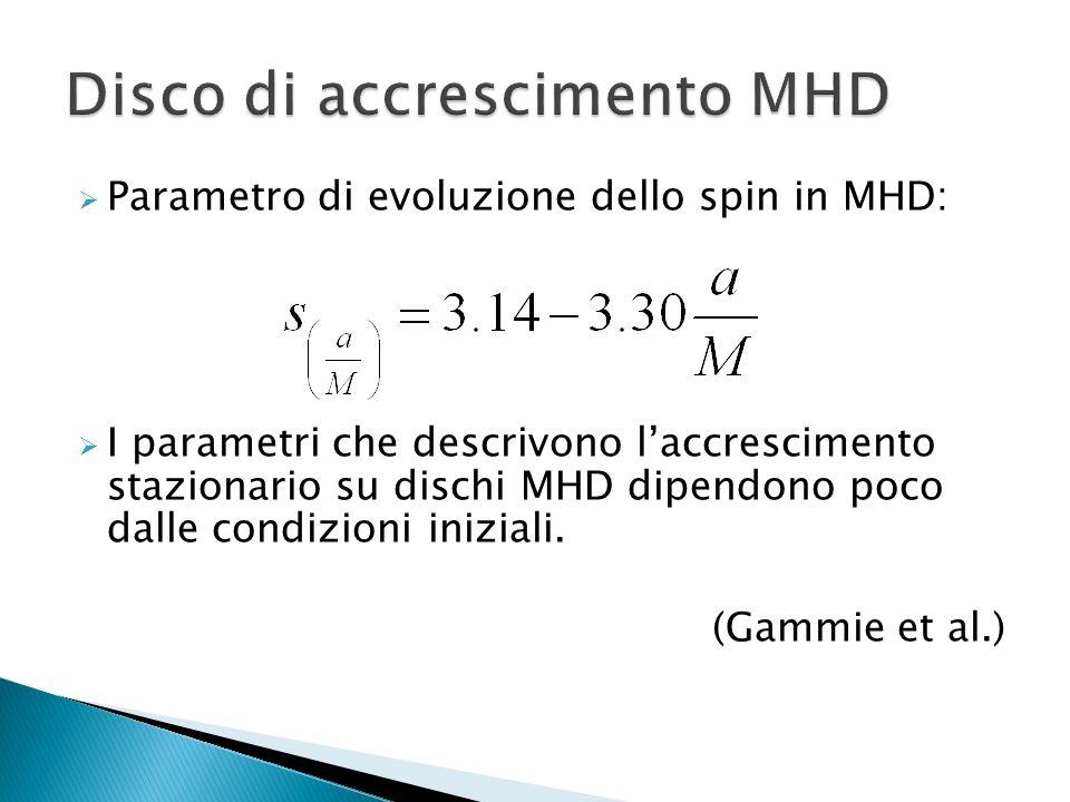 Parametro di evoluzione dello spin in MHD: I parametri che descrivono laccrescimento stazionario su dischi MHD dipendono poco dalle condizioni inizial