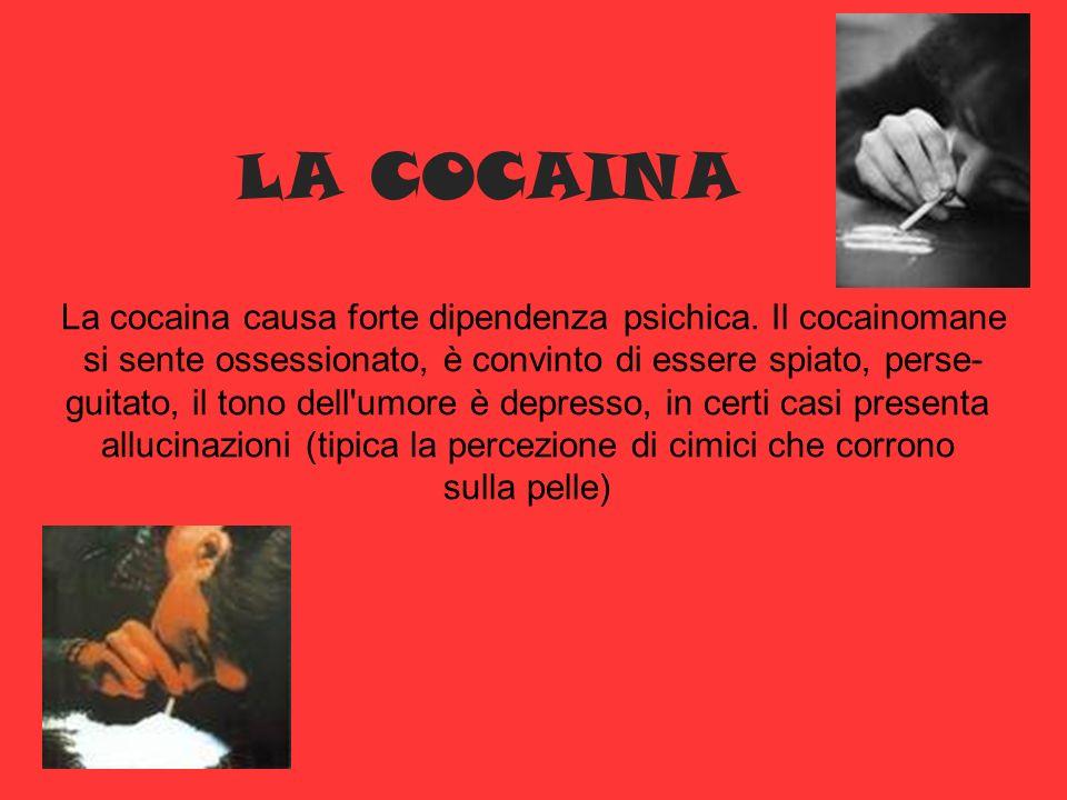 LA COCAINA La cocaina causa forte dipendenza psichica. Il cocainomane si sente ossessionato, è convinto di essere spiato, perse- guitato, il tono dell