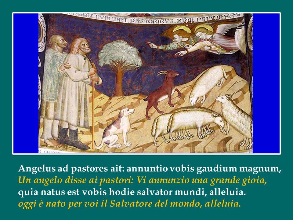 Alma Redemptoris Mater Santa del Redentore Madre