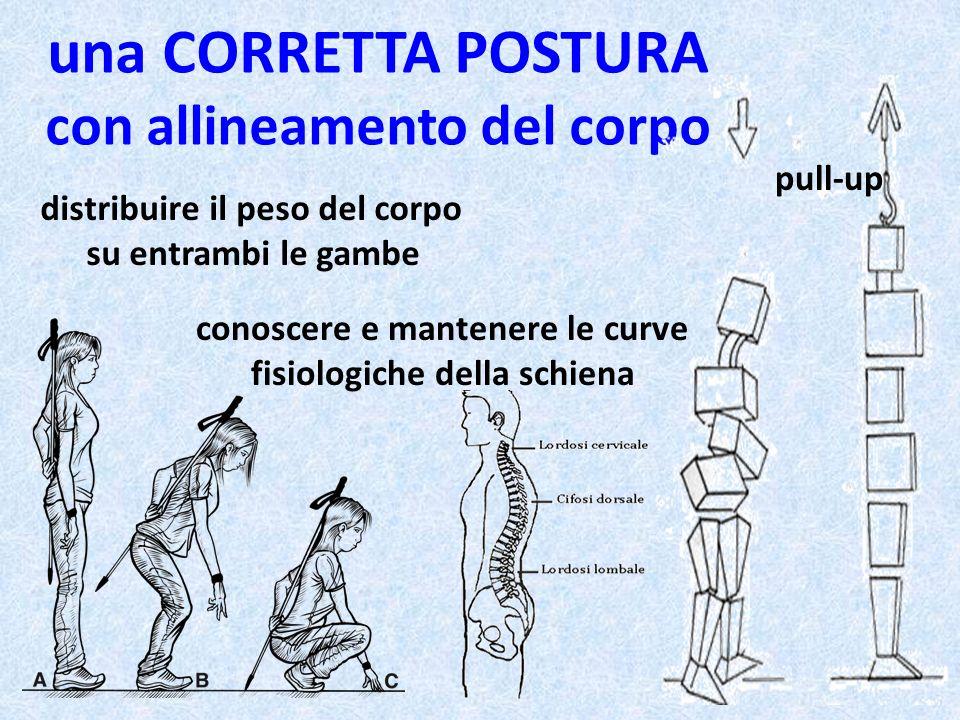 una CORRETTA POSTURA con allineamento del corpo distribuire il peso del corpo su entrambi le gambe conoscere e mantenere le curve fisiologiche della s