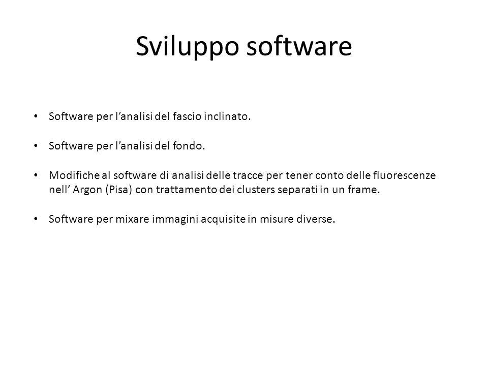 Sviluppo software Software per lanalisi del fascio inclinato.