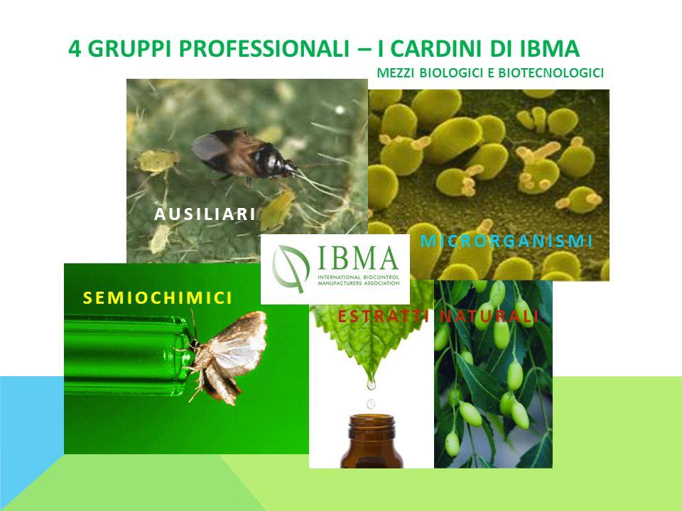 4 GRUPPI PROFESSIONALI – I CARDINI DI IBMA SEMIOCHIMICI AUSILIARI MICRORGANISMI ESTRATTI NATURALI MEZZI BIOLOGICI E BIOTECNOLOGICI