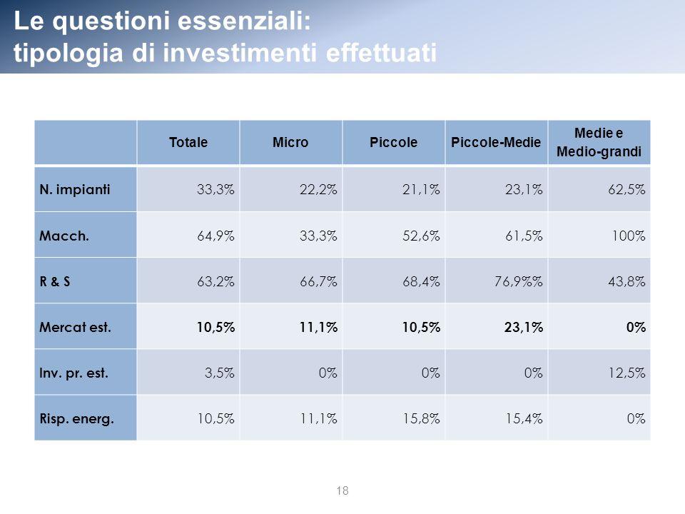 Le questioni essenziali: tipologia di investimenti effettuati TotaleMicroPiccolePiccole-Medie Medie e Medio-grandi N.