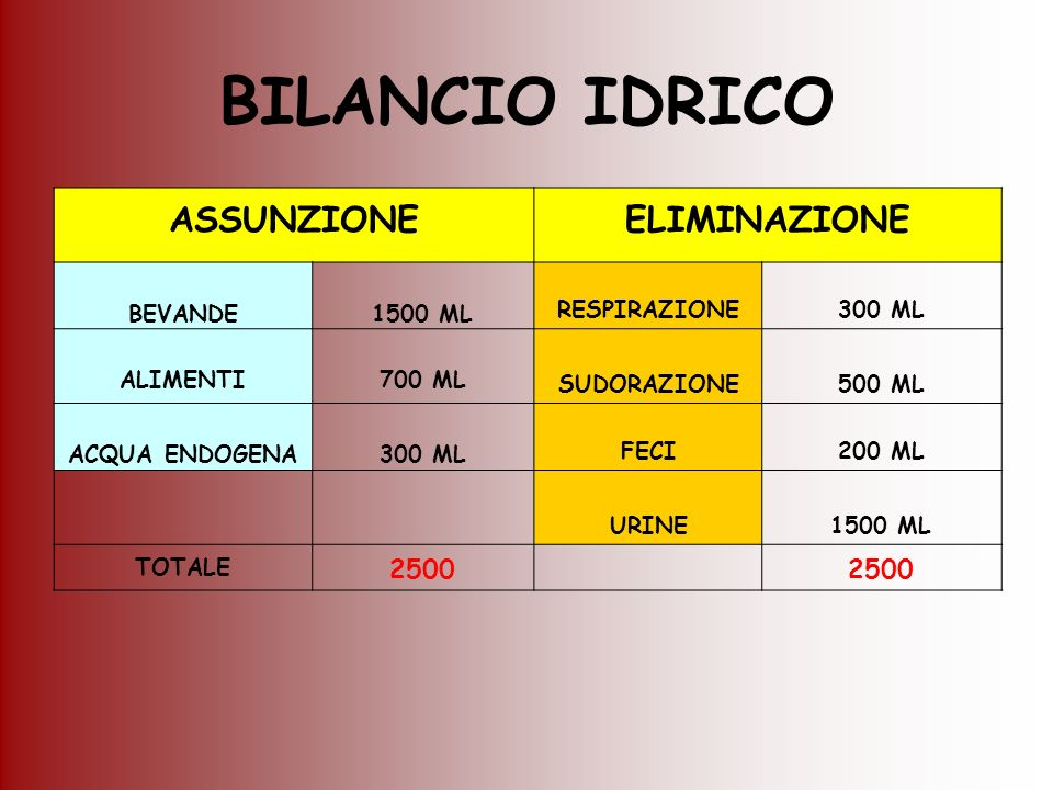 BILANCIO IDRICO ASSUNZIONEELIMINAZIONE BEVANDE1500 ML RESPIRAZIONE300 ML ALIMENTI700 ML SUDORAZIONE500 ML ACQUA ENDOGENA300 ML FECI200 ML URINE1500 ML