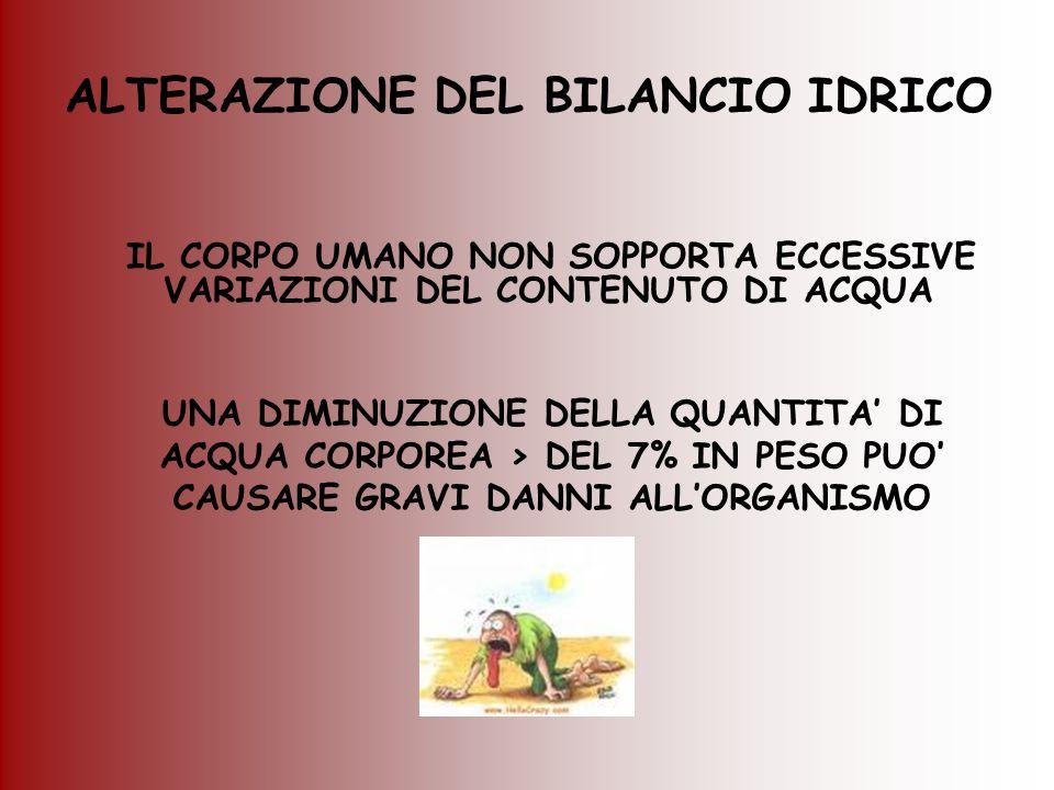 ALTERAZIONE DEL BILANCIO IDRICO IL CORPO UMANO NON SOPPORTA ECCESSIVE VARIAZIONI DEL CONTENUTO DI ACQUA UNA DIMINUZIONE DELLA QUANTITA DI ACQUA CORPOR