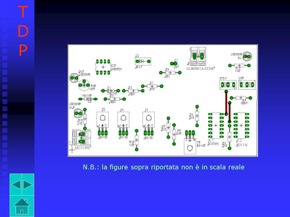 N.B.: la figure sopra riportata non è in scala reale TDPTDP