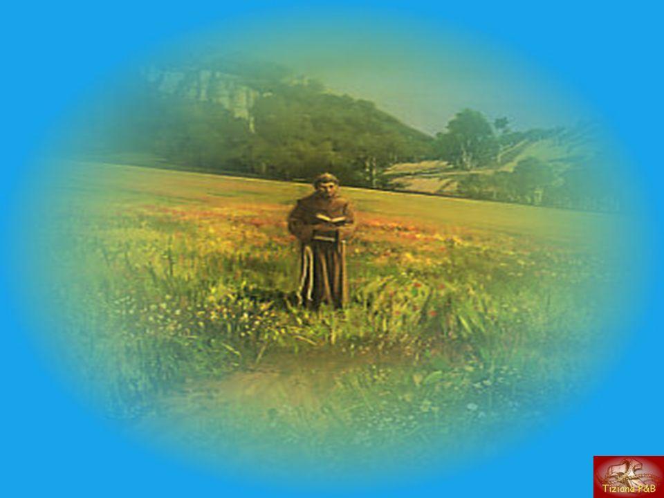 Grati a Dio del dono di San Francesco dAssisi ripensiamo la sua vita. (tratto dal libro Nacque al mondo un sole di S.Duranti )