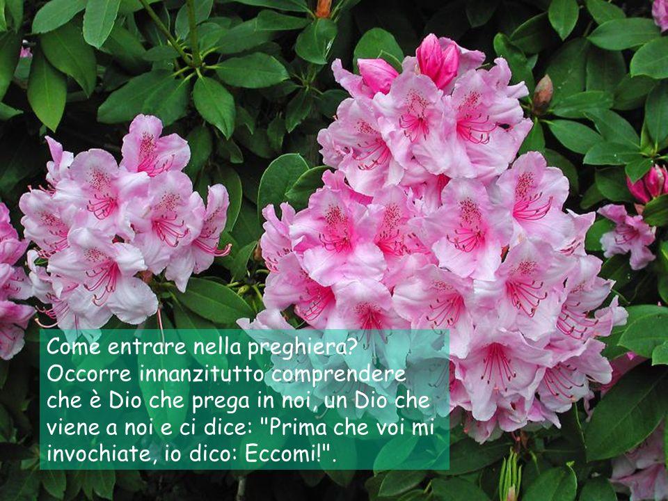 Adattamento a testo di: Enzo Bianchi